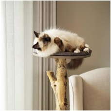 TIRA SCRATCHES CATS GYM DESIGN IN SOLID WOOD HANDICRAFT HOME FURNITURE MADE IN ITALY
