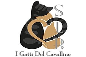-     SCUDERIA LE BLANC     -                        I Gatti del Cavallino!